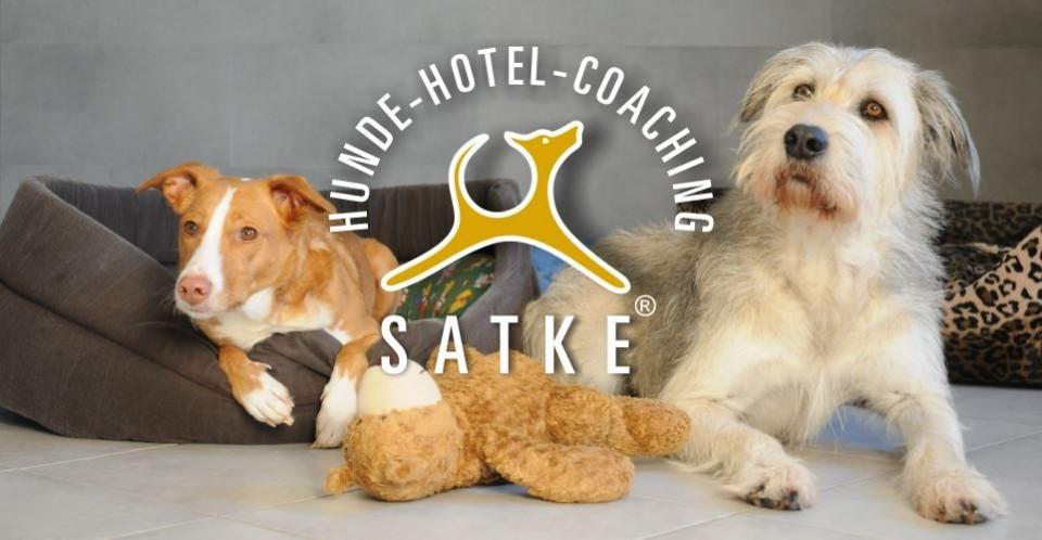 Hundepension Satke nahe München mit profesioneller Hundebetreuung
